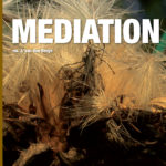 kennisboek mediation